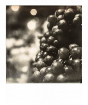 SX70 - Cua Ong - Grappes