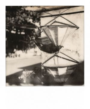 SX70 - Hoi An - Early morning light